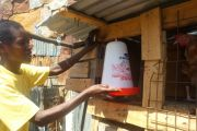 Poultry farming turns into money-spinner for Thabiti Young Mothers Group